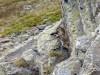 Col de l' Oule - Col Granon - Croix de la Cime