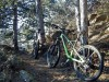 Colle della Serva - Sentiero dei Cinghali
